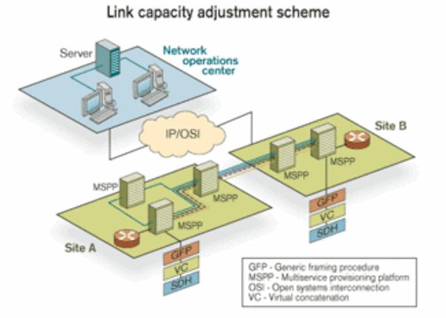 MSPPs can deliver digital video over existing networks